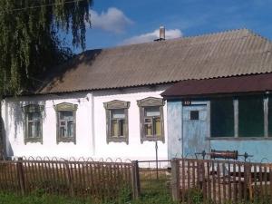 Панинский район, с. Борщево, ул. В. Терешковой (57 голосов)