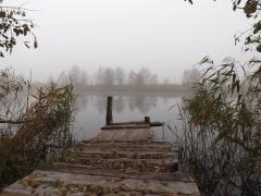 Туманное осенне утро. река Битюг, Аннинский район Б
